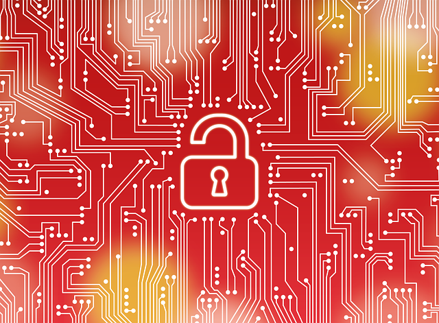 Oracle Data Encryption Options